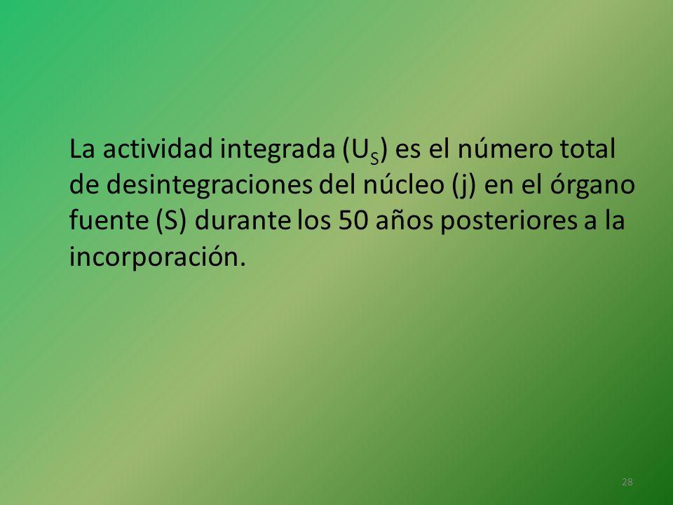 La actividad integrada (US) es el número total de desintegraciones del núcleo (j) en el órgano fuente (S) durante los 50 años posteriores a la incorporación.