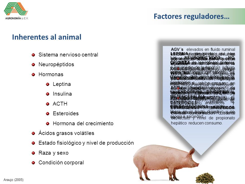 Factores reguladores…