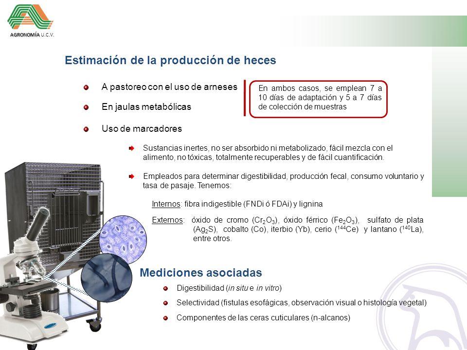 Estimación de la producción de heces