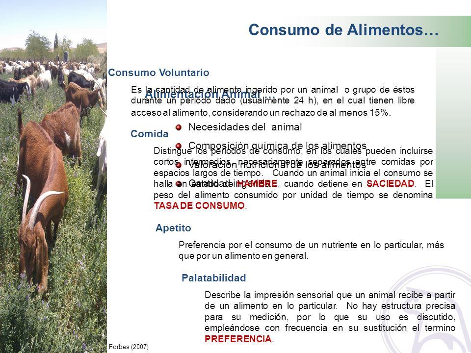 Consumo de Alimentos… Alimentación Animal … Consumo Voluntario