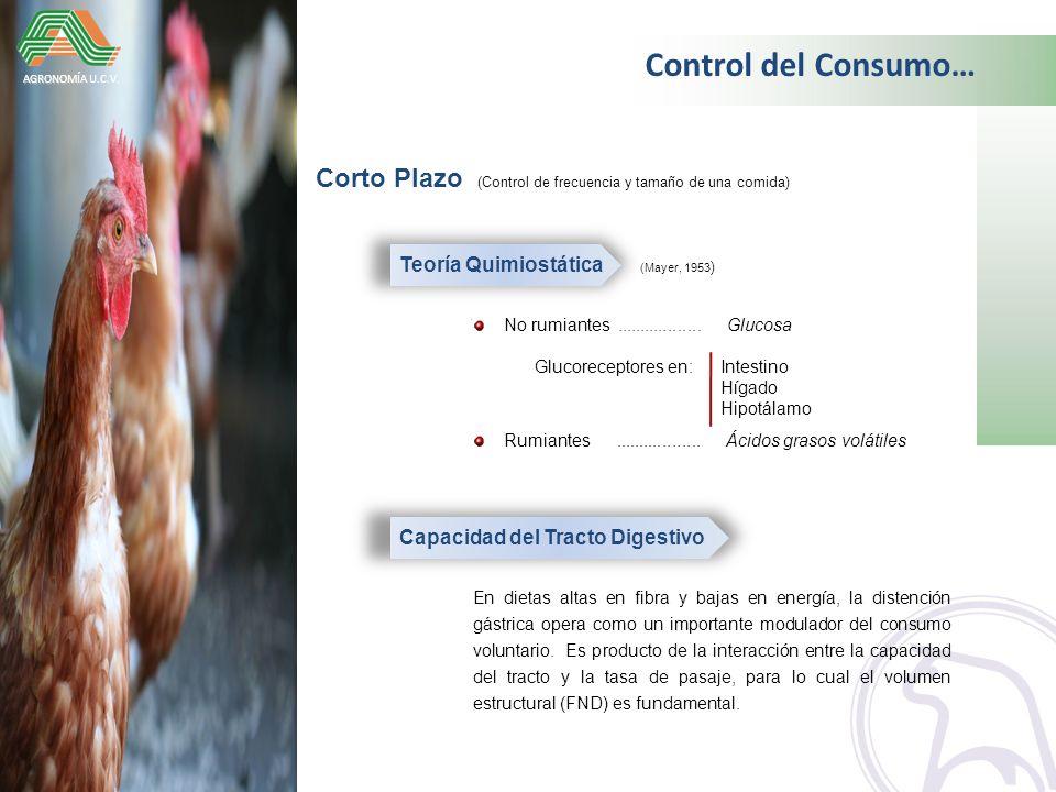 Control del Consumo… AGRONOMÍA U.C.V. Corto Plazo (Control de frecuencia y tamaño de una comida) Teoría Quimiostática (Mayer, 1953)