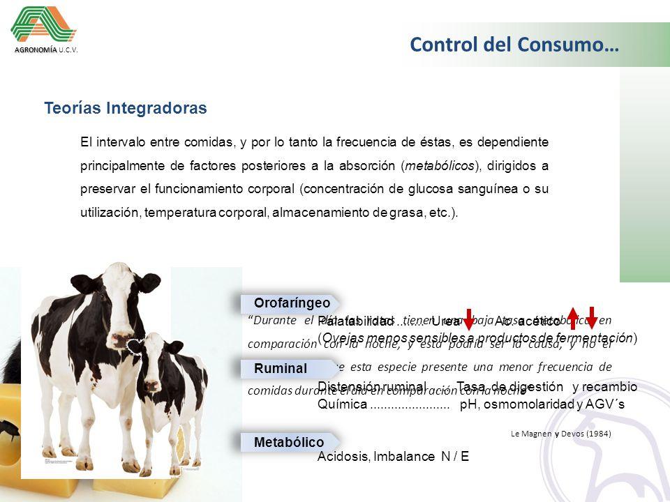 Control del Consumo… Teorías Integradoras