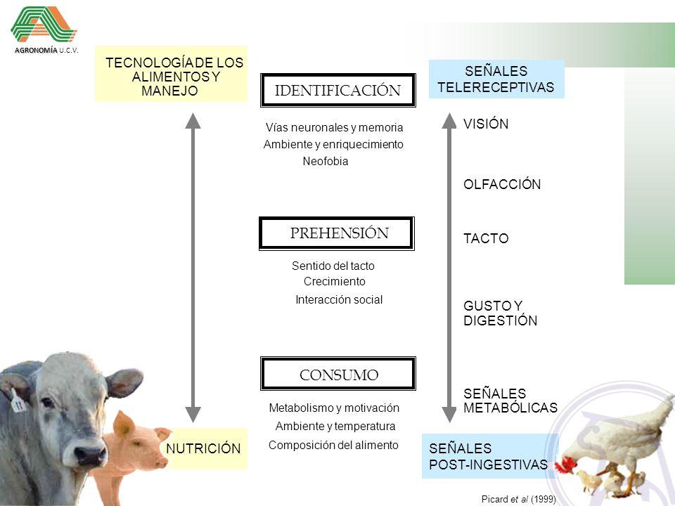 IDENTIFICACIÓN PREHENSIÓN CONSUMO TECNOLOGÍA DE LOS SEÑALES