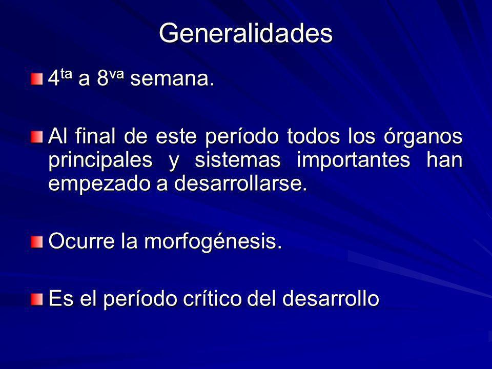 Generalidades 4ta a 8va semana.