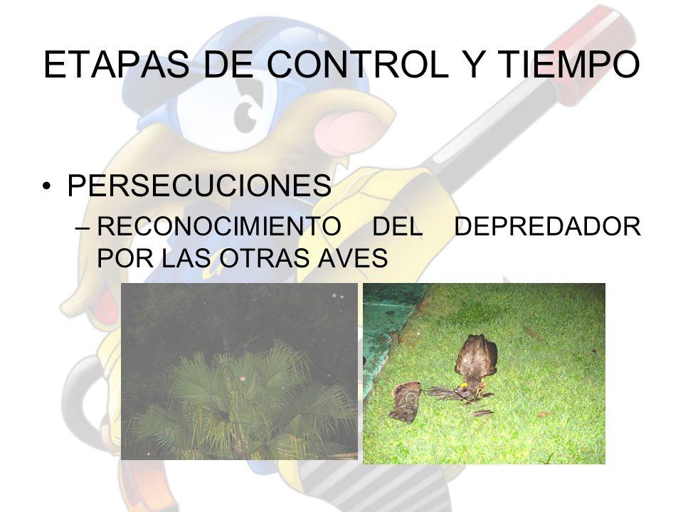 ETAPAS DE CONTROL Y TIEMPO