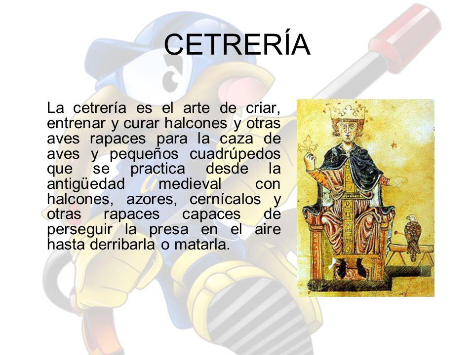 CETRERÍA