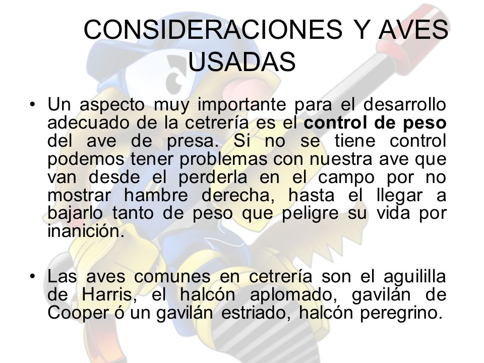 CONSIDERACIONES Y AVES USADAS