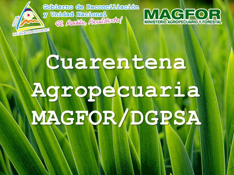 Cuarentena Agropecuaria MAGFOR/DGPSA