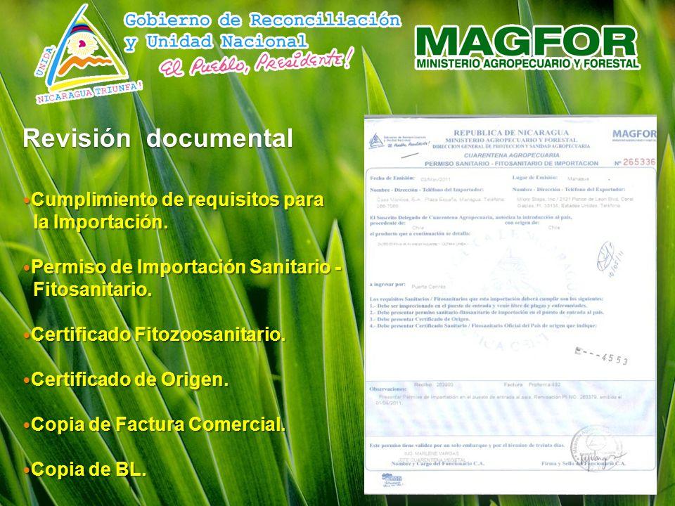 Revisión documental Cumplimiento de requisitos para la Importación.