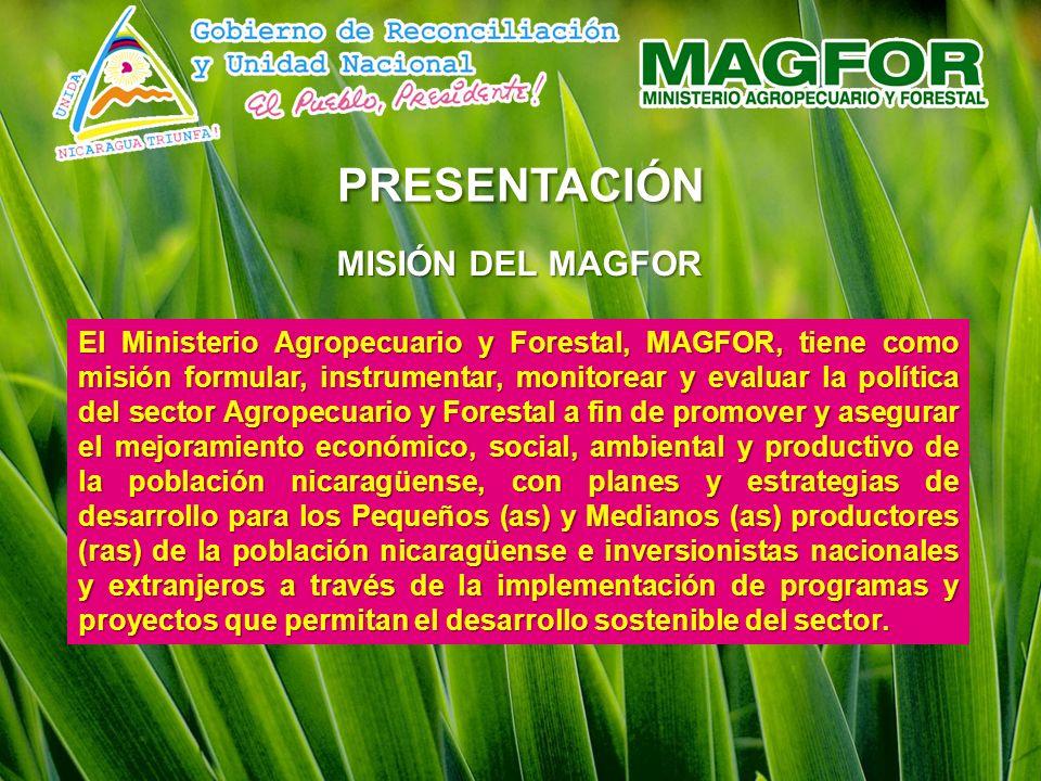 PRESENTACIóN MISIÓN DEL MAGFOR