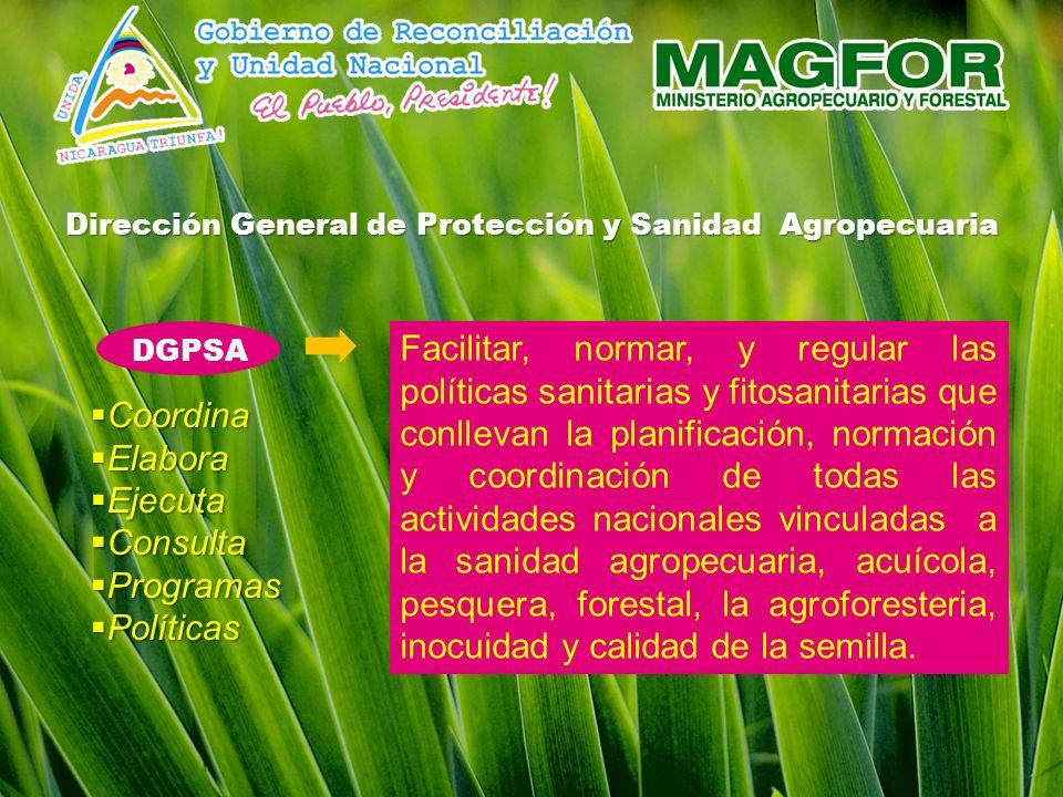 Dirección General de Protección y Sanidad Agropecuaria