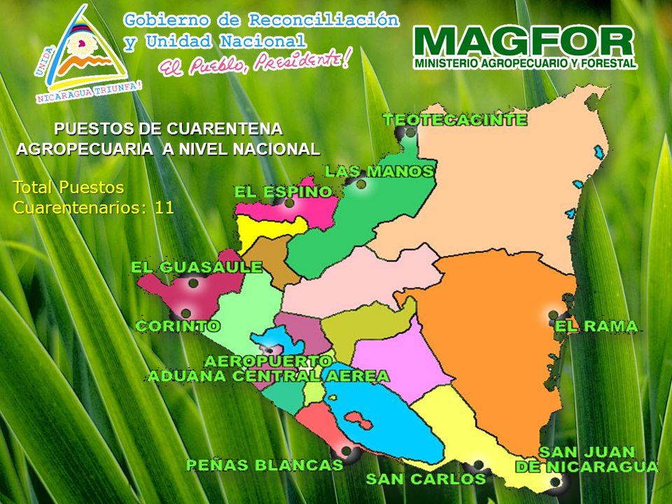 PUESTOS DE CUARENTENA AGROPECUARIA A NIVEL NACIONAL