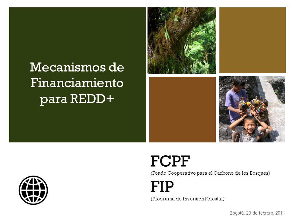 Mecanismos de Financiamiento para REDD+