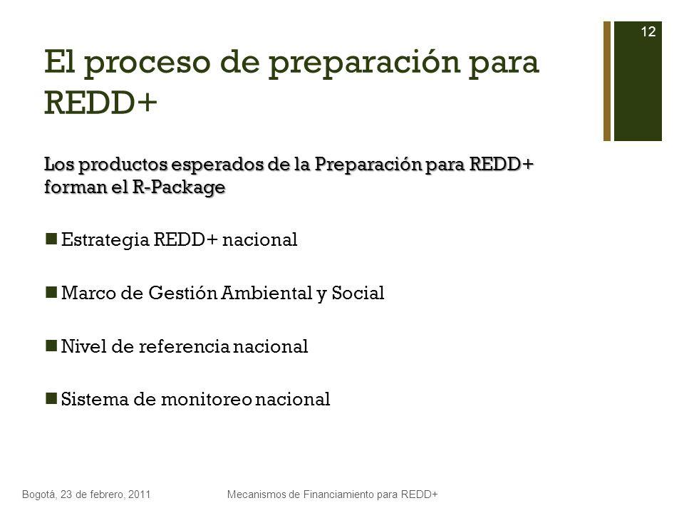 El proceso de preparación para REDD+