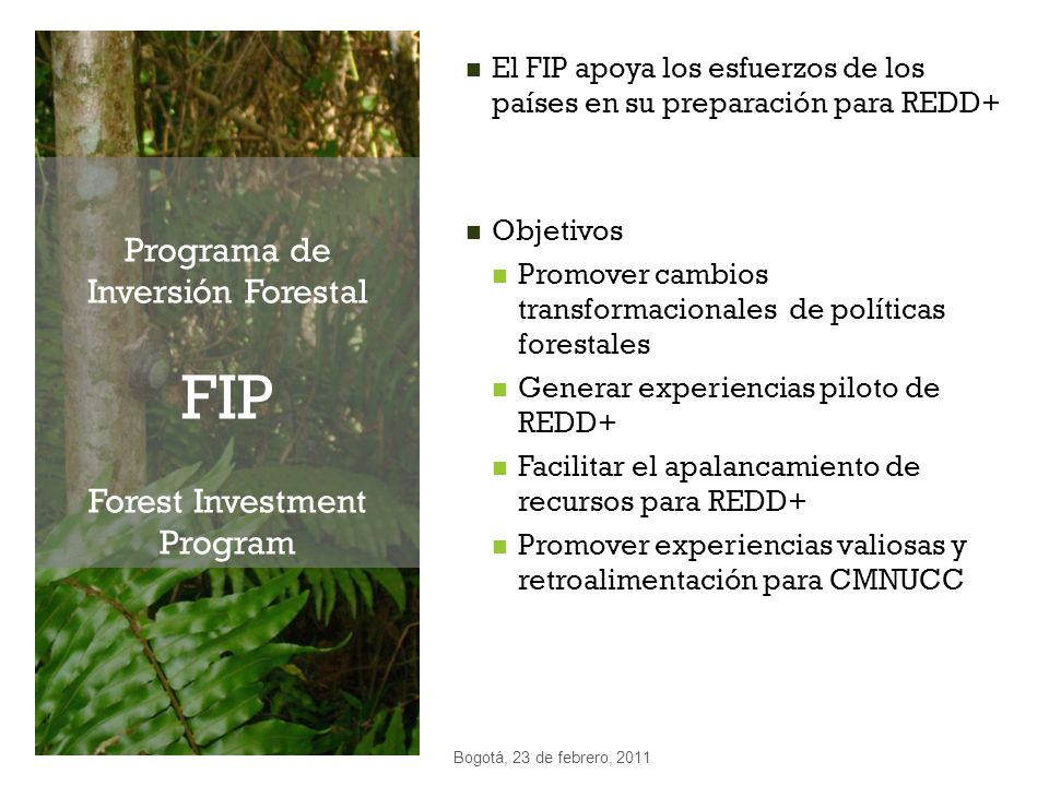 Programa de Inversión Forestal FIP Forest Investment Program
