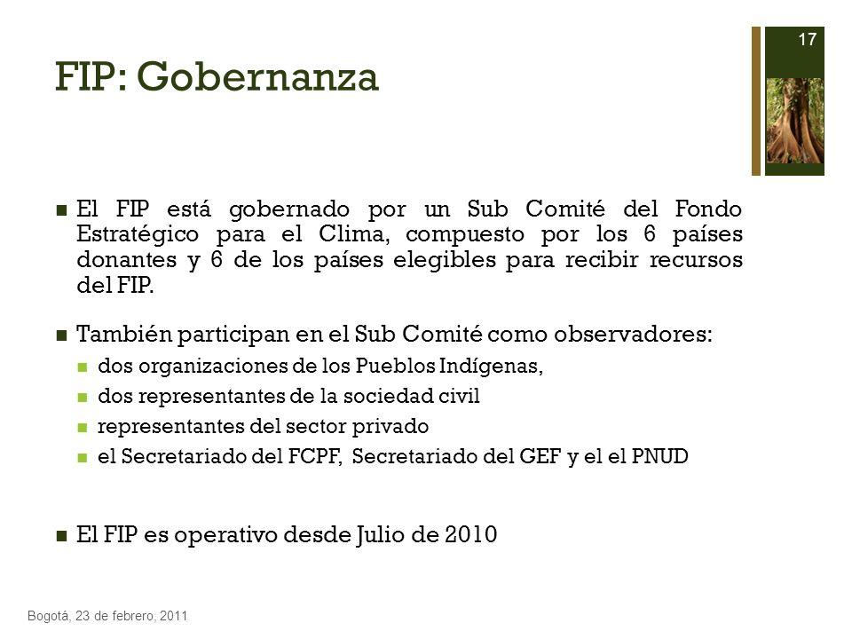 FIP: Gobernanza