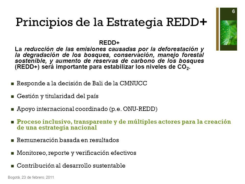 Principios de la Estrategia REDD+