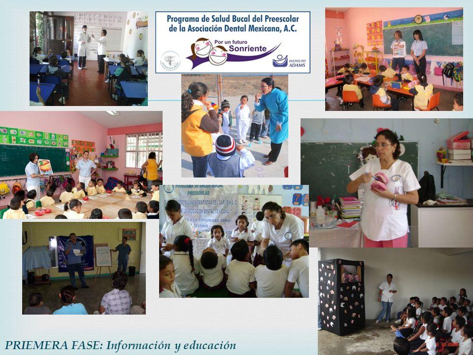 PRIEMERA FASE: Información y educación