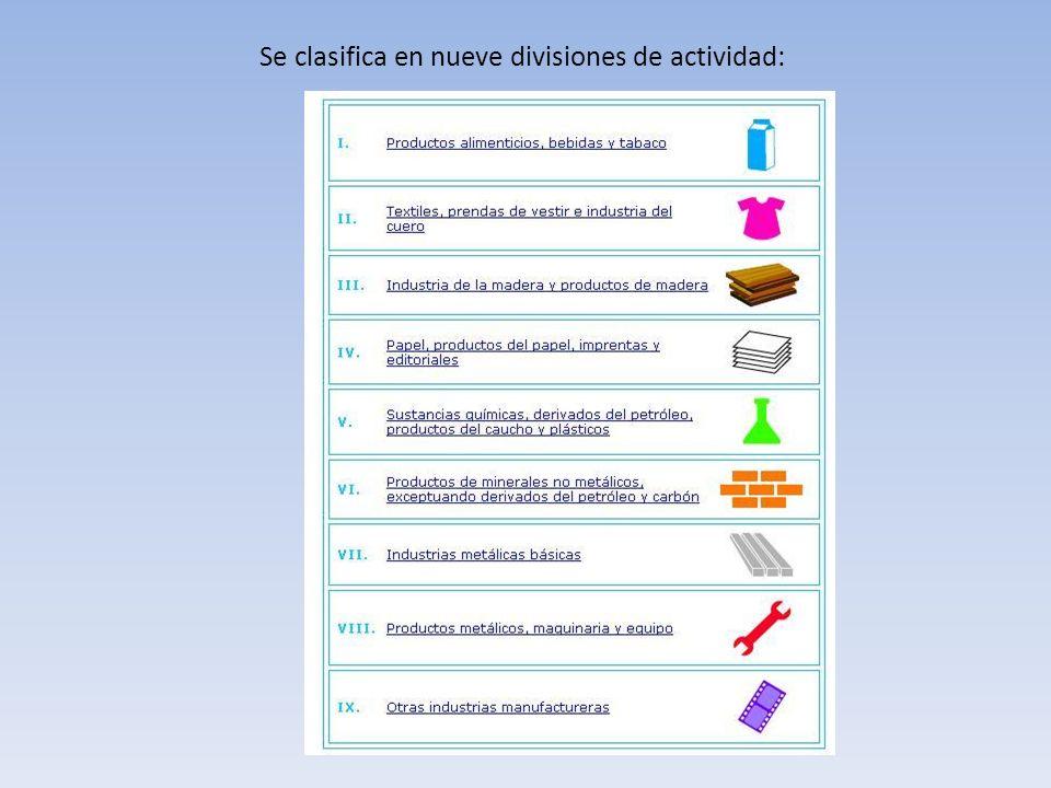Se clasifica en nueve divisiones de actividad: