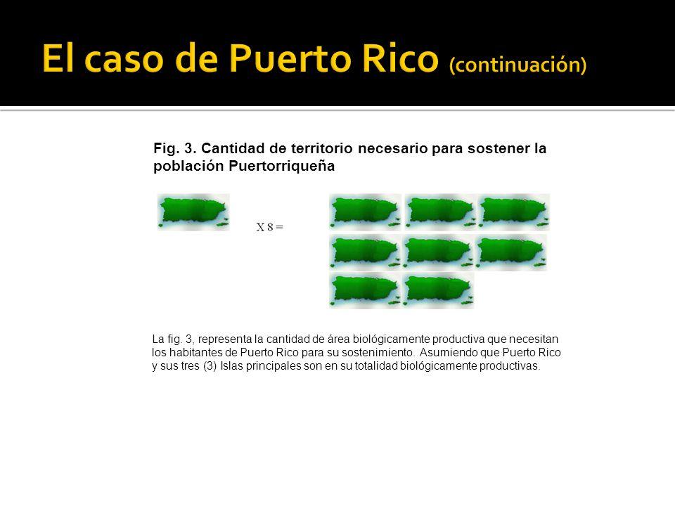 El caso de Puerto Rico (continuación)