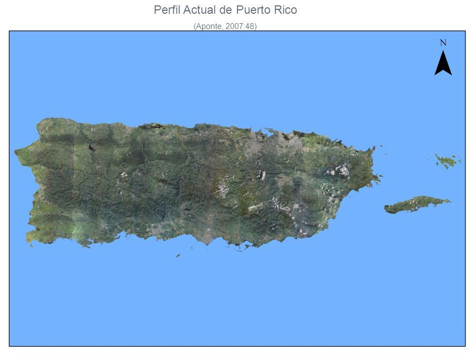 Perfil Actual de Puerto Rico