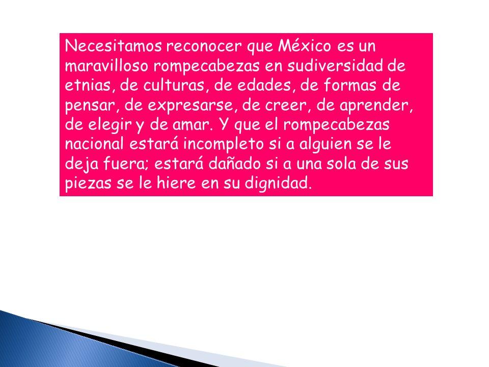Necesitamos reconocer que México es un maravilloso rompecabezas en sudiversidad de etnias, de culturas, de edades, de formas de pensar, de expresarse, de creer, de aprender, de elegir y de amar.