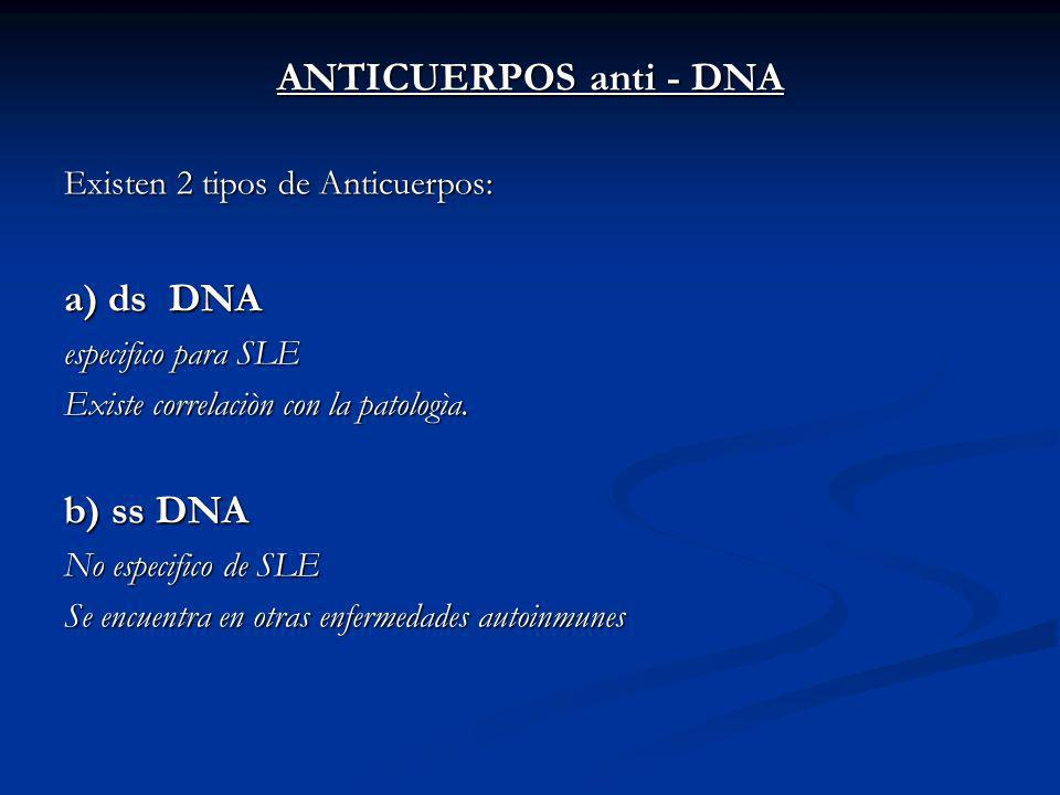 ANTICUERPOS anti - DNA a) ds DNA b) ss DNA