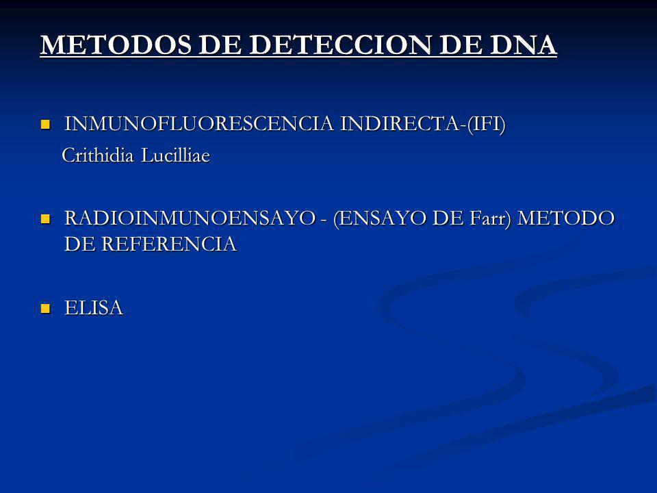 METODOS DE DETECCION DE DNA