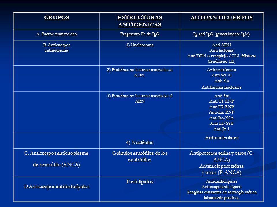 ESTRUCTURAS ANTIGENICAS