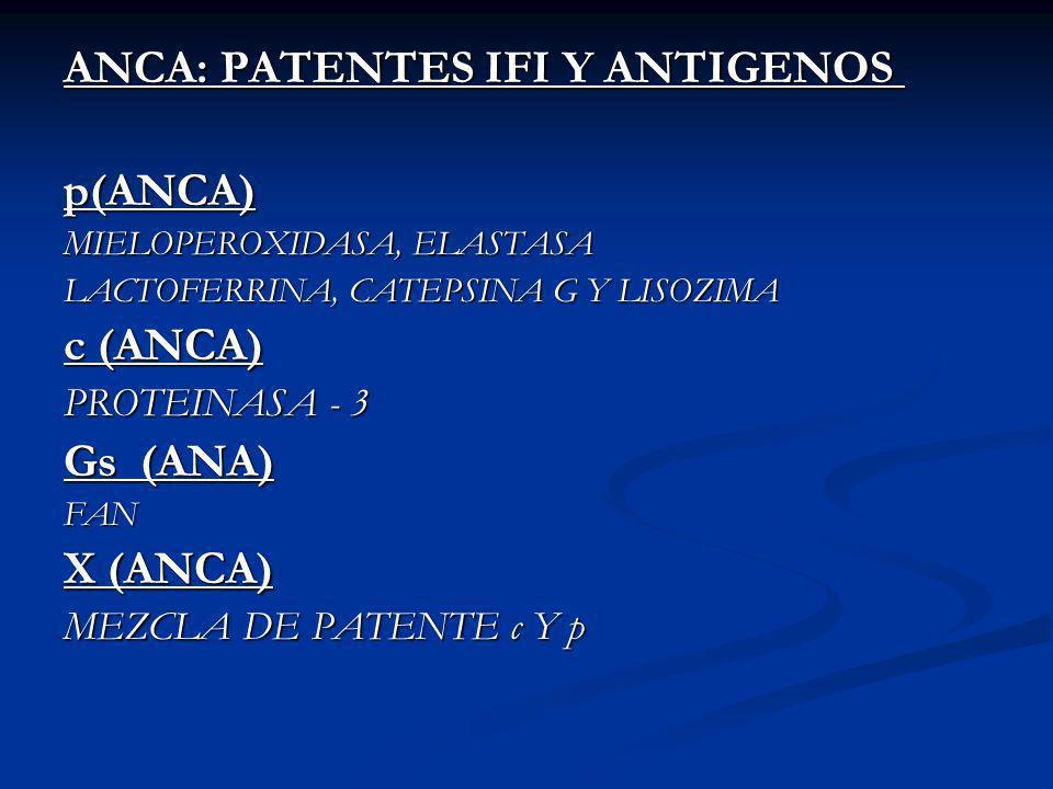 ANCA: PATENTES IFI Y ANTIGENOS p(ANCA)