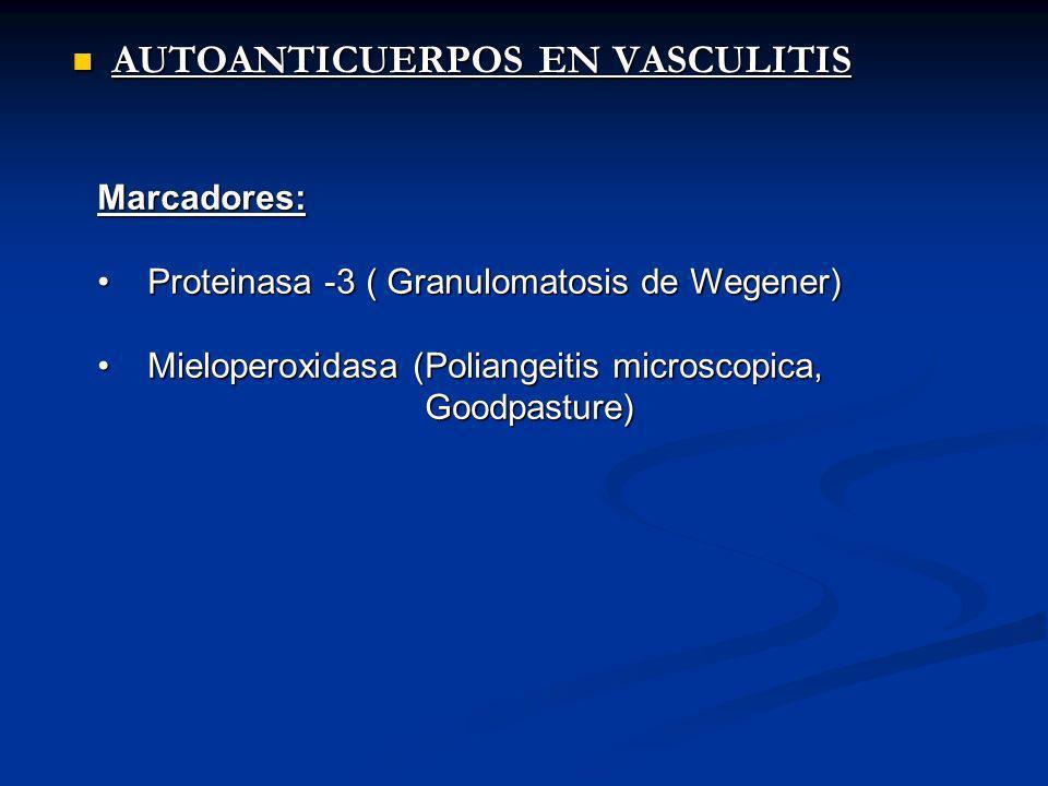AUTOANTICUERPOS EN VASCULITIS