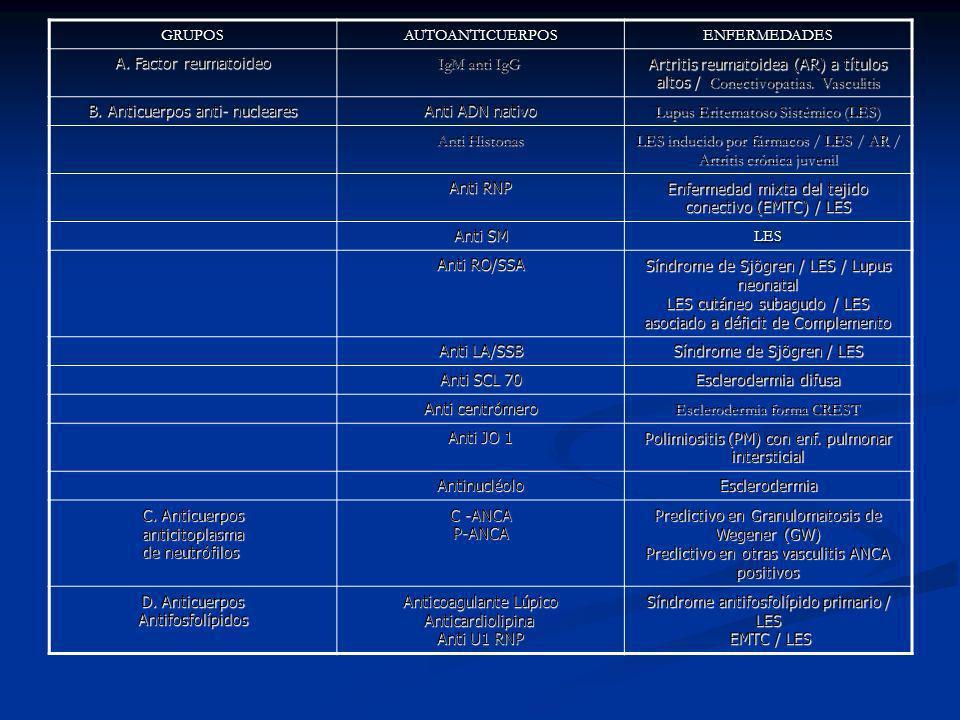 B. Anticuerpos anti- nucleares Anti ADN nativo