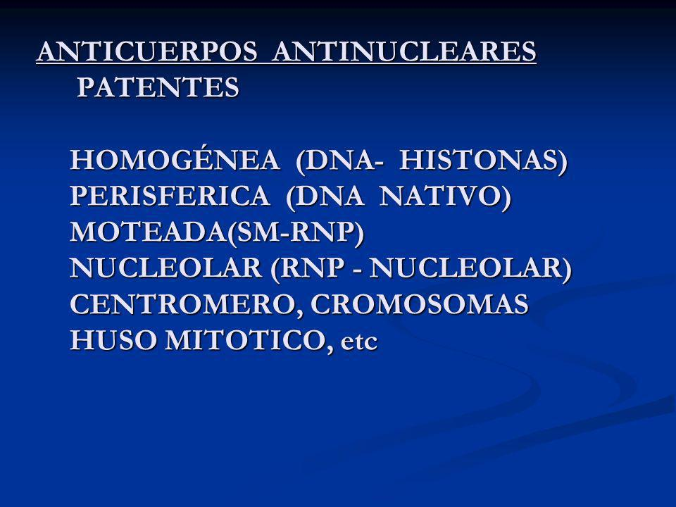 ANTICUERPOS ANTINUCLEARES PATENTES HOMOGÉNEA (DNA- HISTONAS) PERISFERICA (DNA NATIVO) MOTEADA(SM-RNP) NUCLEOLAR (RNP - NUCLEOLAR) CENTROMERO, CROMOSOMAS HUSO MITOTICO, etc