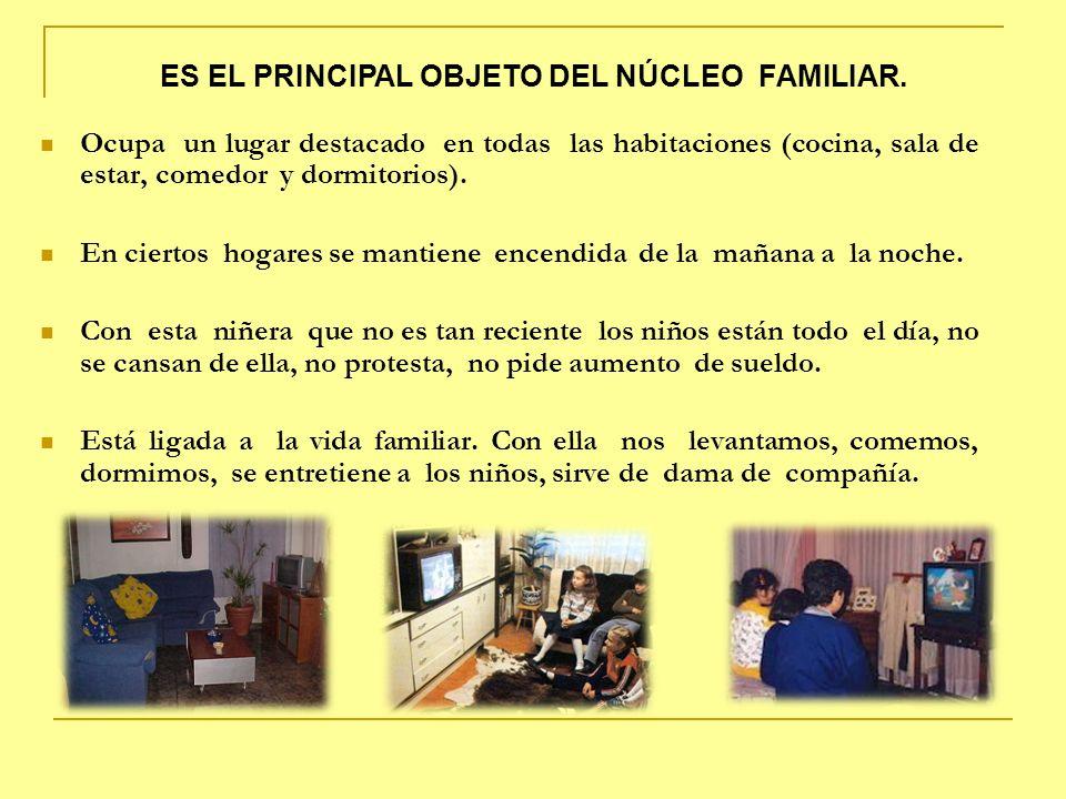 ES EL PRINCIPAL OBJETO DEL NÚCLEO FAMILIAR.