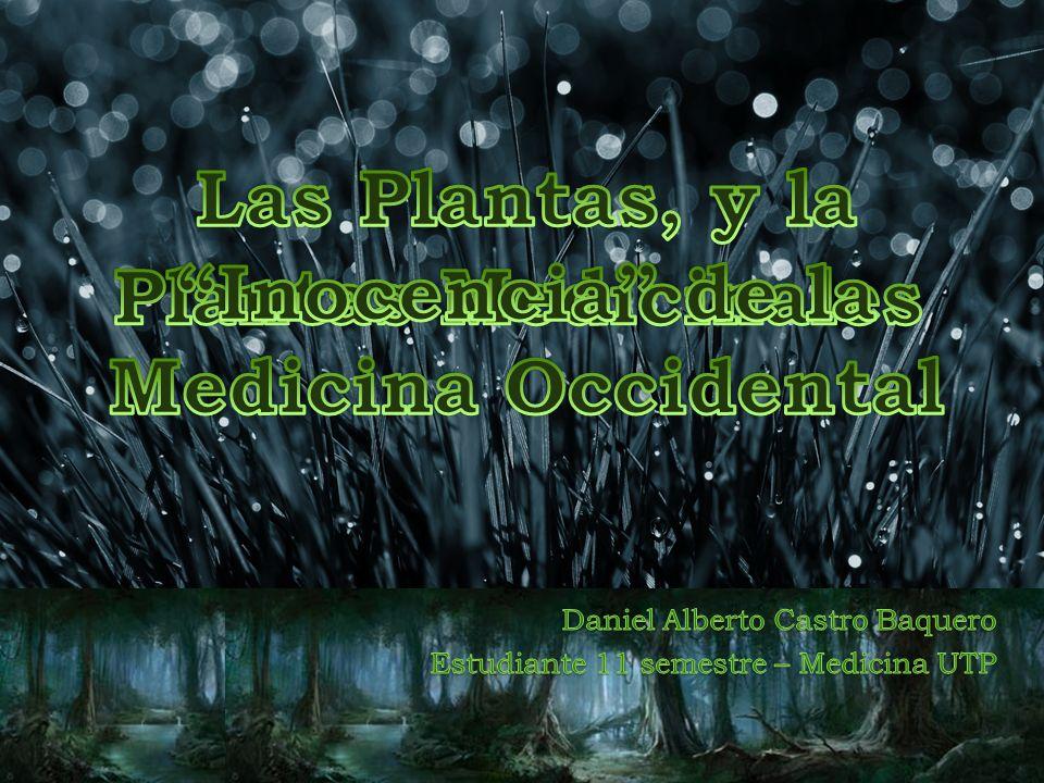 Daniel Alberto Castro Baquero Estudiante 11 semestre – Medicina UTP