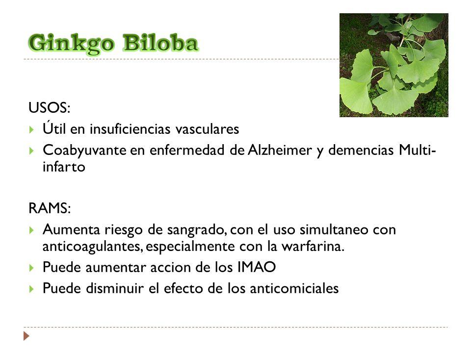 Ginkgo Biloba USOS: Útil en insuficiencias vasculares