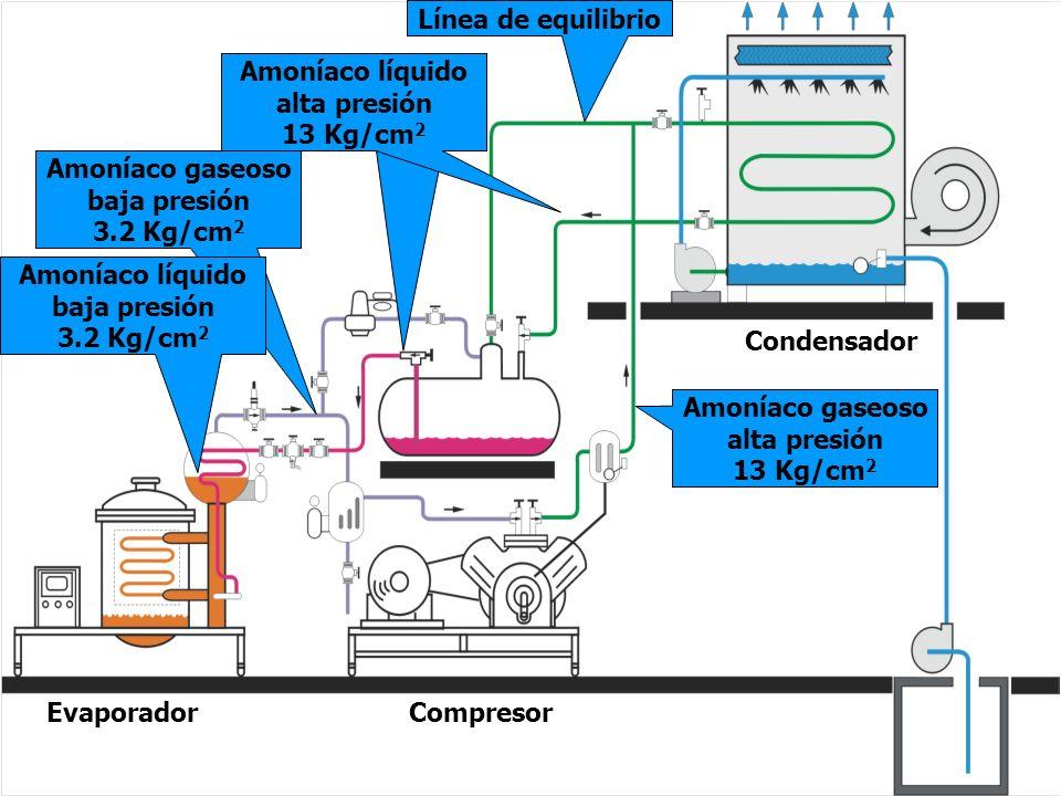 Línea de equilibrio Amoníaco líquido. alta presión. 13 Kg/cm2. Amoníaco líquido. alta presión. 13 Kg/cm2.