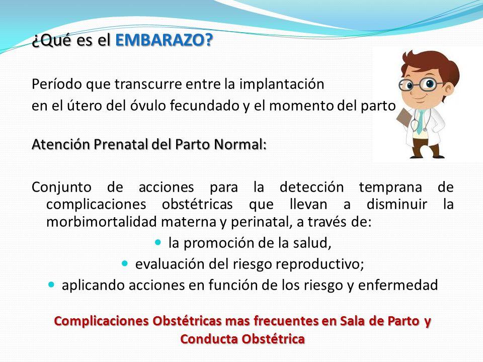 ¿Qué es el EMBARAZO Período que transcurre entre la implantación