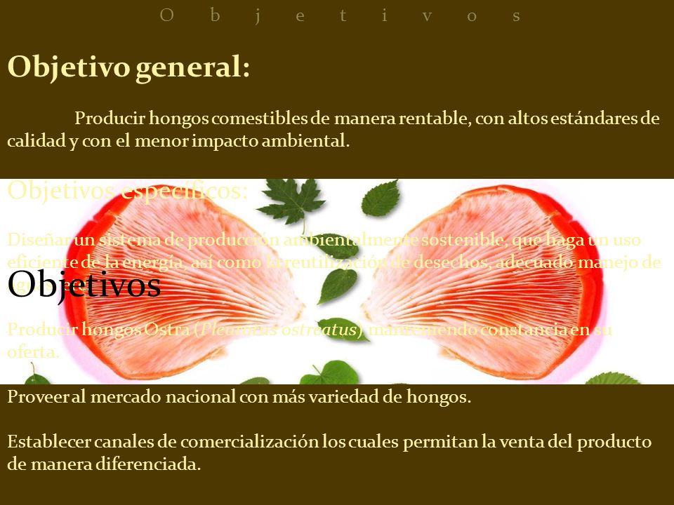 Objetivos Objetivo general: Objetivos específicos: Objetivos