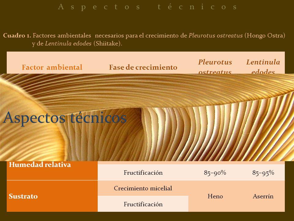 Aspectos técnicos Aspectos técnicos Factor ambiental