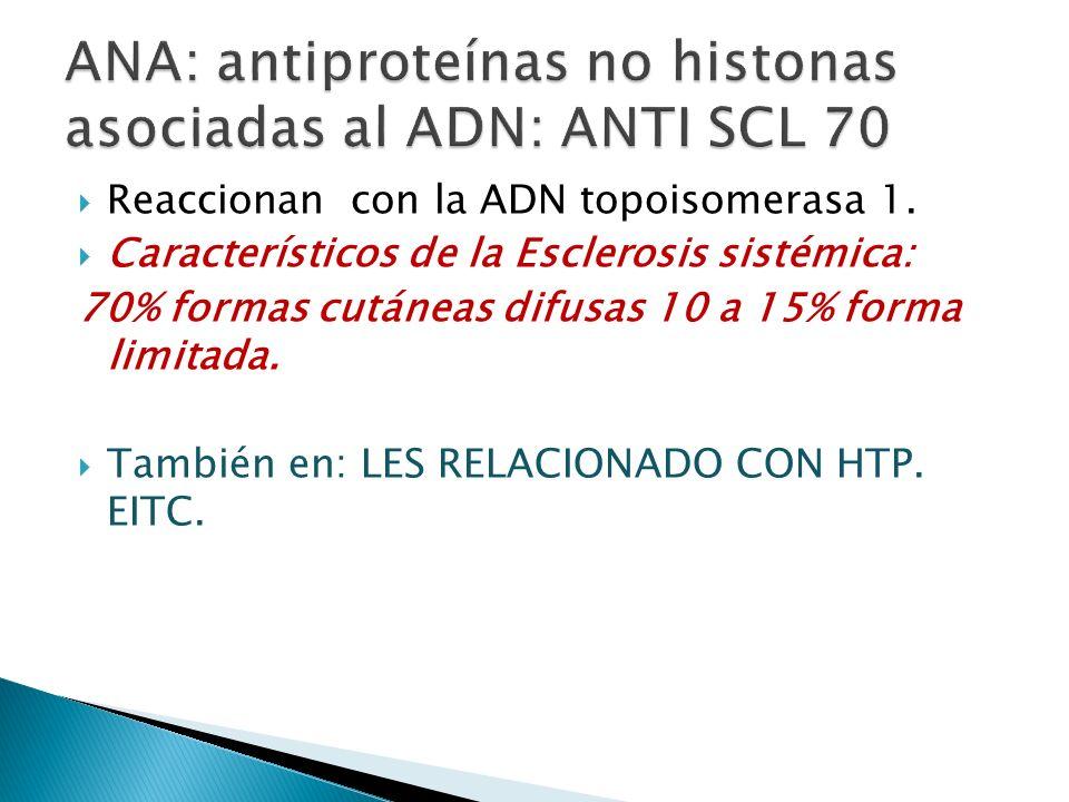 ANA: antiproteínas no histonas asociadas al ADN: ANTI SCL 70
