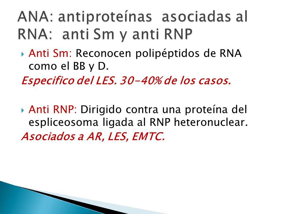 ANA: antiproteínas asociadas al RNA: anti Sm y anti RNP