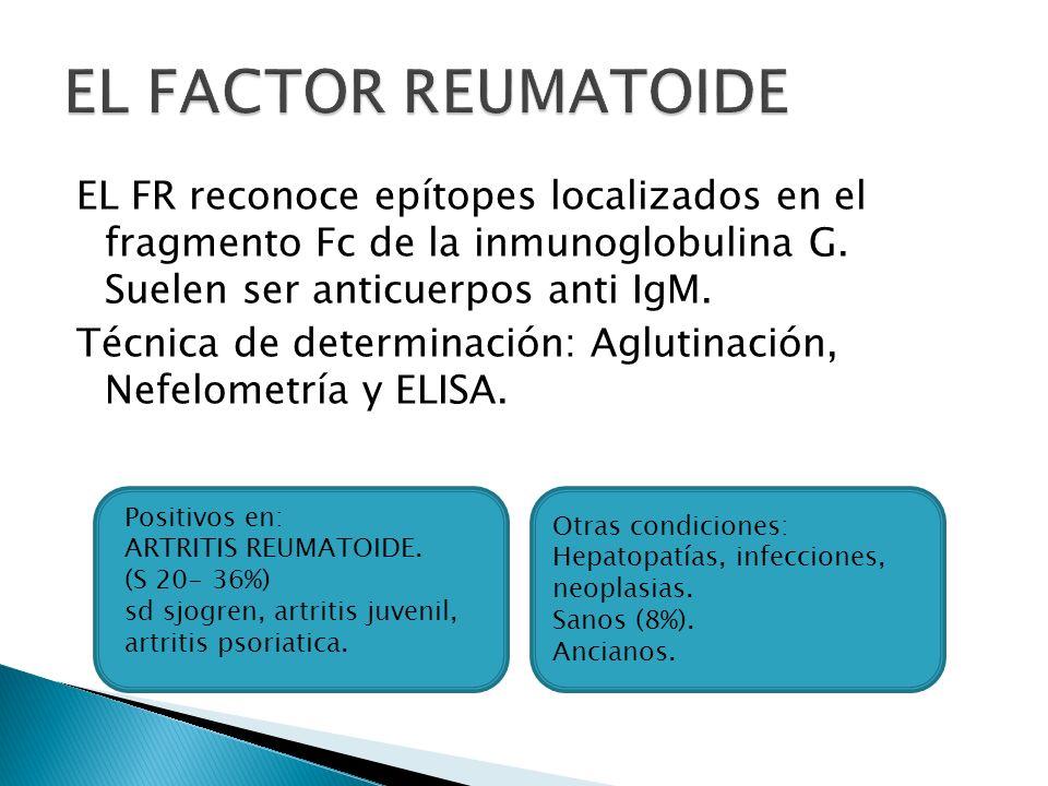 EL FACTOR REUMATOIDE