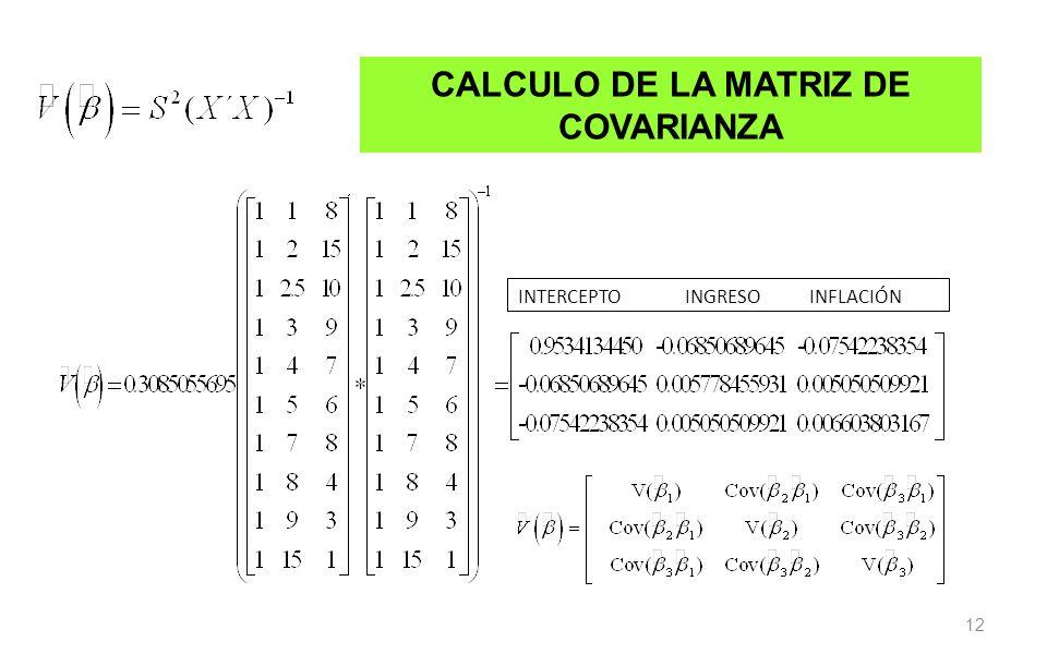 CALCULO DE LA MATRIZ DE COVARIANZA
