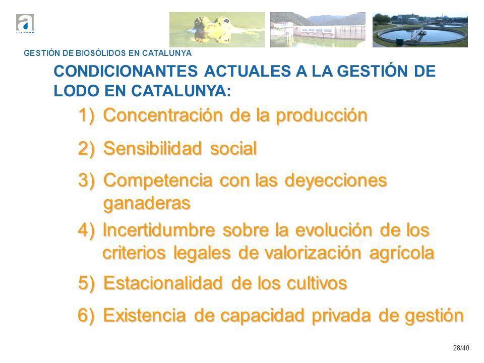 1) Concentración de la producción