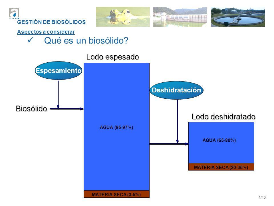 Qué es un biosólido Lodo espesado Biosólido Lodo deshidratado