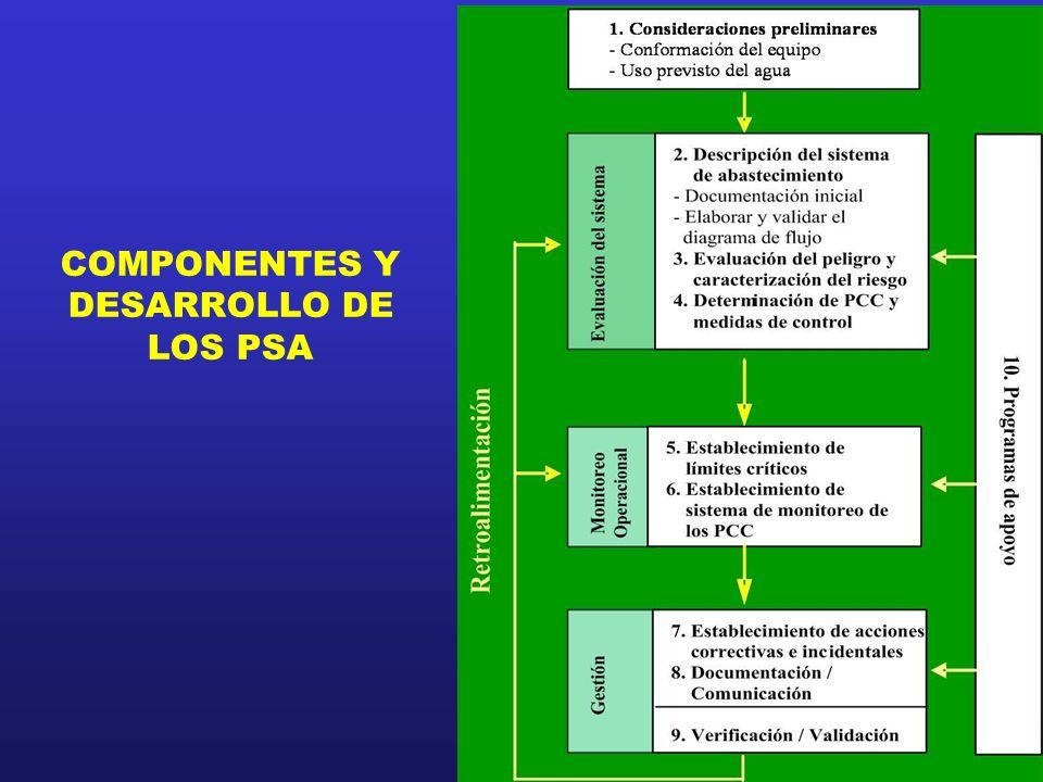 COMPONENTES Y DESARROLLO DE LOS PSA