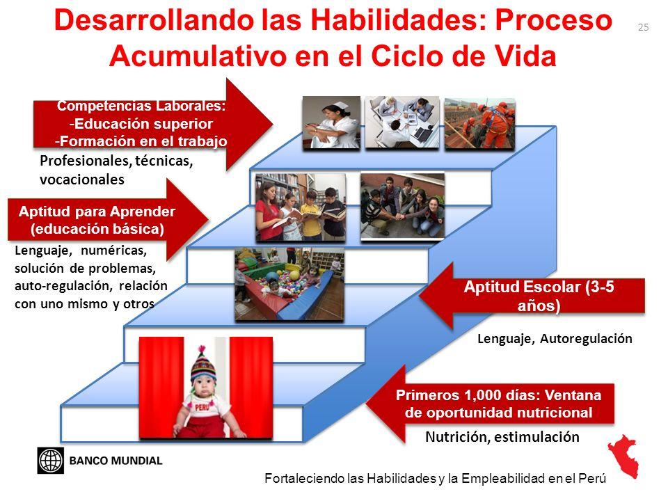 Desarrollando las Habilidades: Proceso Acumulativo en el Ciclo de Vida