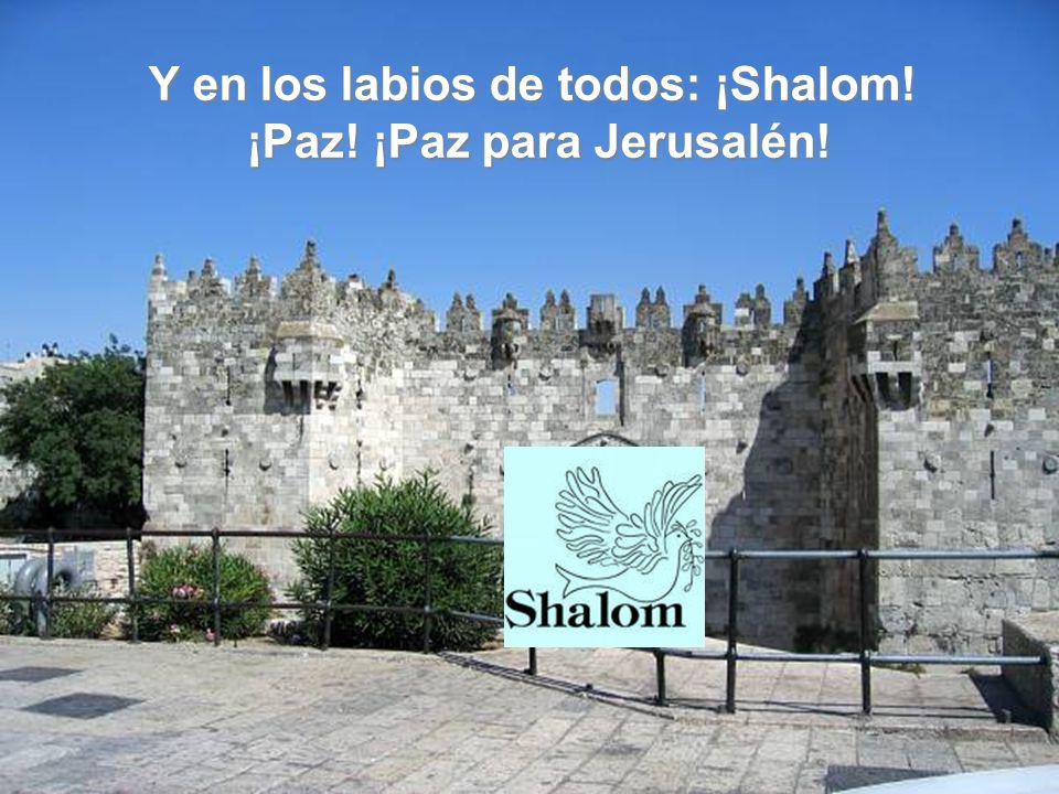 Y en los labios de todos: ¡Shalom! ¡Paz! ¡Paz para Jerusalén!