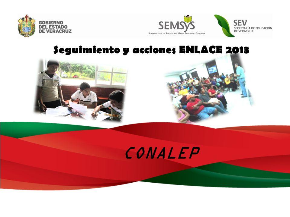 Seguimiento y acciones ENLACE 2013